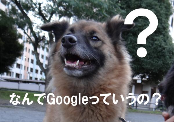 Googleの名前の由来って何ですか